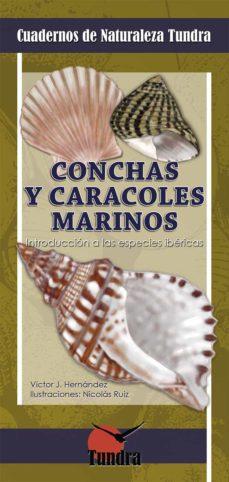 conchas y caracoles marinos. introduccion a las especies ibericas-victor j. hernandez-9788416702886