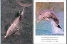 delfines-9788499135380