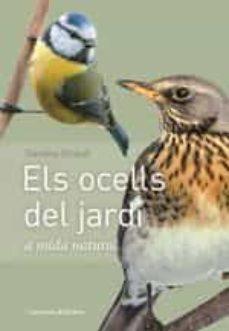 els ocells del jardi a mida natural: a mida real-daniela strauss-9788490347461