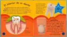 ¡adios al dentista! (el cuerpo humano)-9788499135731