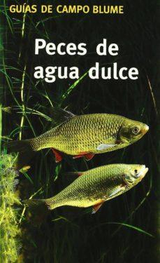 (pe) peces de agua dulce: como reconocerlos y determinarlos-gunter steinbach-9788480764780