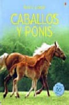 caballos y ponis (libro de pegatinas)-9781409503705