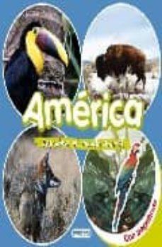 descubre el mundo animal: america (libro de pegatinas)-9788424116613