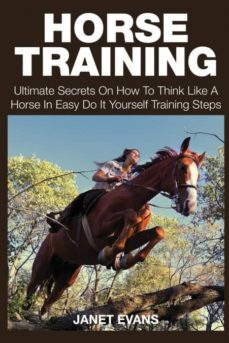 horse training-9781633831803