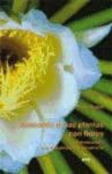 anatomia de las plantas con flores: introduccion a la estructura y el desarrollo-paula rudall-9788492774494