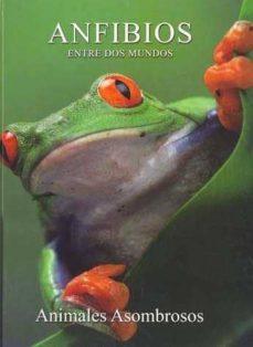 anfibios: entre dos mundos-9788449218576