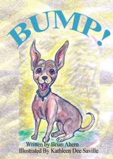 bump!-9781635530001