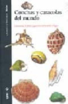 conchas y caracolas del mundo-giovanna zobele lipparini-9788496553446
