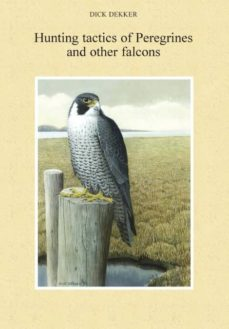 hunting tactics of peregrines and other falcons-9780888396839