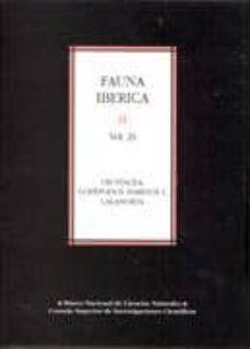fauna iberica vol. 29 : crustacea, copepodos marinos i. calanoida-francisco vives-alexandra a. shmeleva-9788400085155