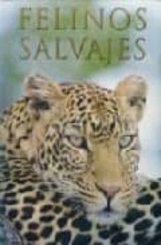 felinos salvajes-mike briggs-9781405489225