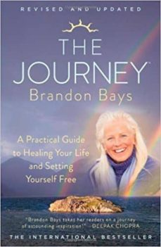 the journey: a practical guide to healing your life and setting yourself free-brandon bays-9781451665611