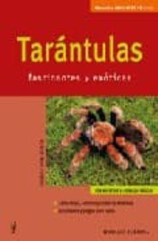 tarantulas fascinantes y exoticas-volker von wirth-9788425516320